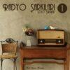 Satılık Plak Radyo Şarkıları Plak Ön